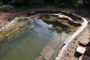 Teichanlage (2)